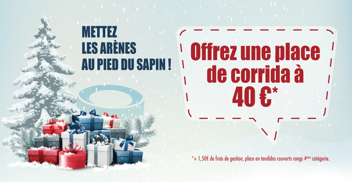 arenes sous le sapin